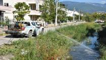 Edremit'te 4 mevsim sinekle mücadele